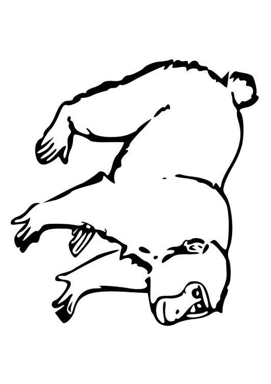 Dibujo para colorear Mono - Img 10252