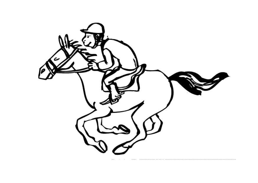 chicas follando caballos