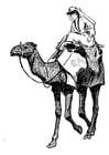 Dibujo para colorear mujer sobre camello