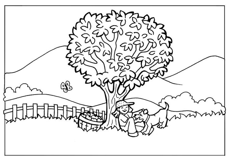 Dibujo para colorear Naturaleza - Img 7106