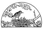 Dibujo para colorear nido de pájaro