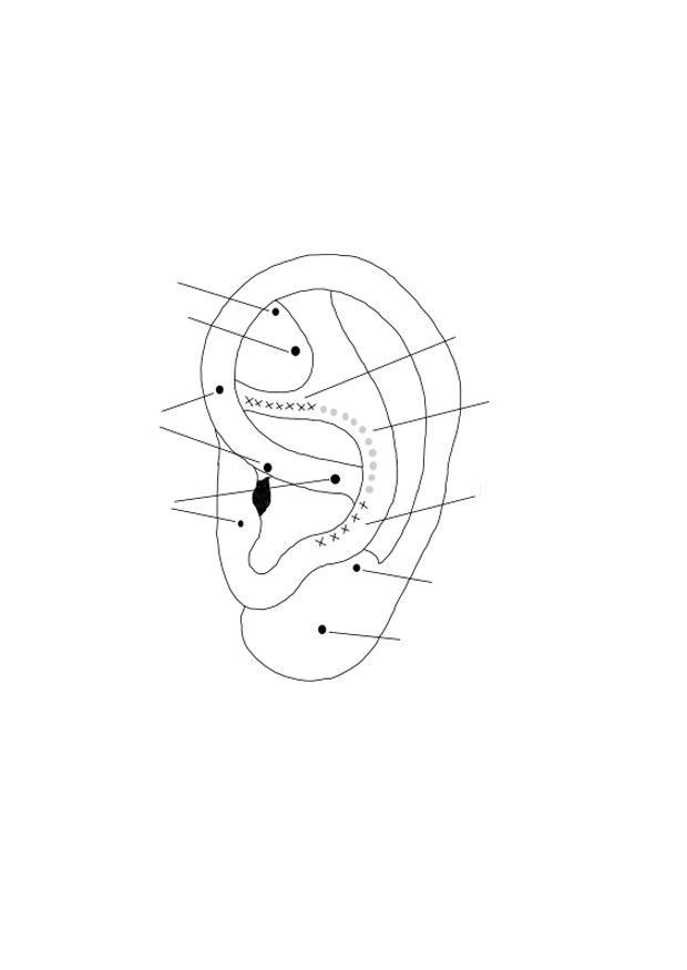 Dibujo para colorear oreja - Img 27602