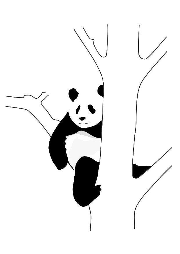 Dibujo para colorear oso panda en rbol  Img 19628