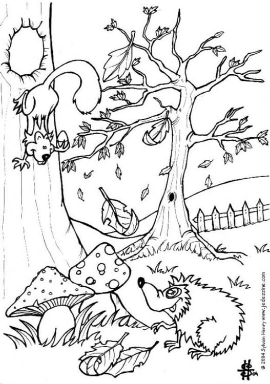 Dibujo para colorear Otoño - erizo y ardilla - Img 6444