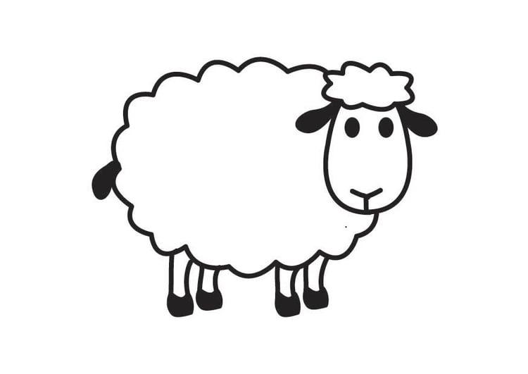 Dibujo para colorear oveja - Img 17791