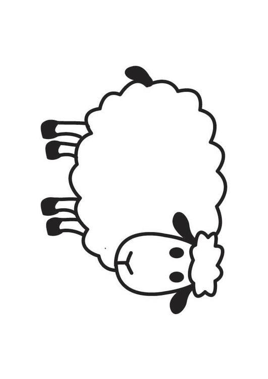 Dibujo para colorear oveja  Img 17791