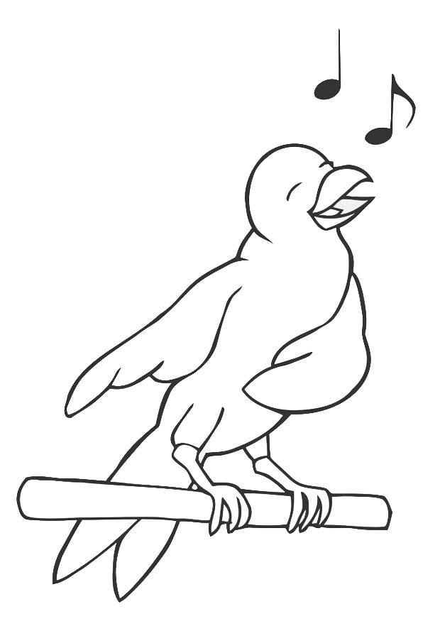 Dibujo Para Colorear Pájaro Cantando Dibujos Para Imprimir