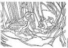 Dibujo para colorear Pájaro con nido