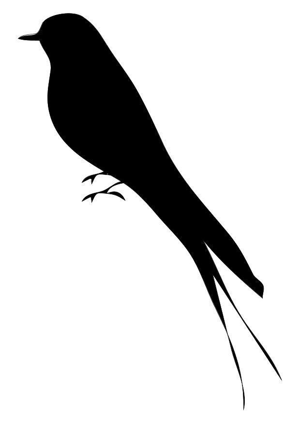 Dibujo para colorear Pájaro - Img 10370