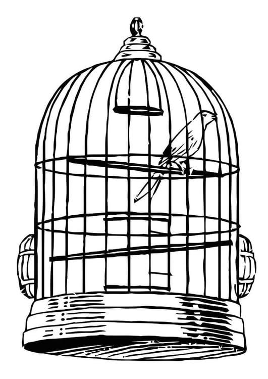 Dibujo Para Colorear Pájaro En Jaula Dibujos Para Imprimir