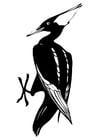 Dibujo para colorear Pájaro