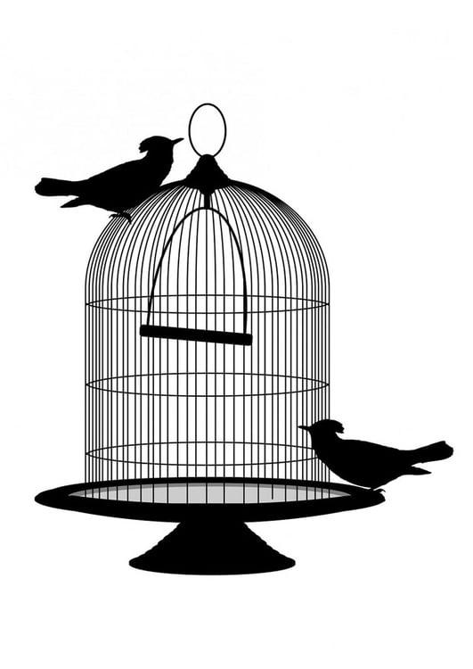 Dibujo Para Colorear Pájaros Fuera De La Jaula Dibujos