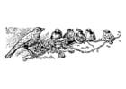 Dibujo para colorear pájaros - madre con polluelos