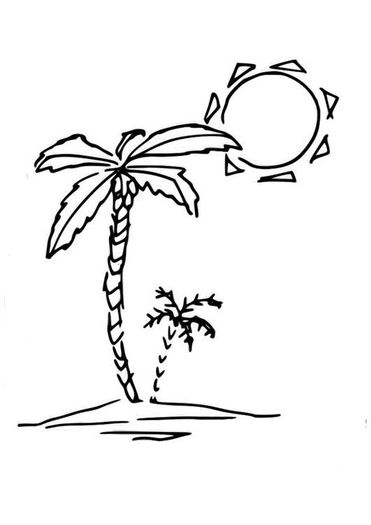 Dibujo para colorear palmera - Img 29827