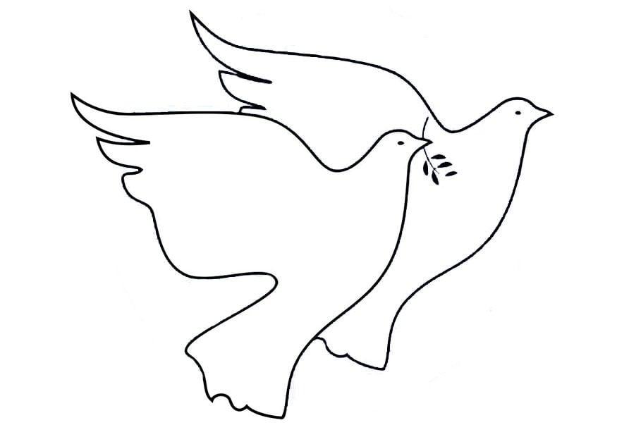 Dibujo para colorear palomas de la paz  Img 19467