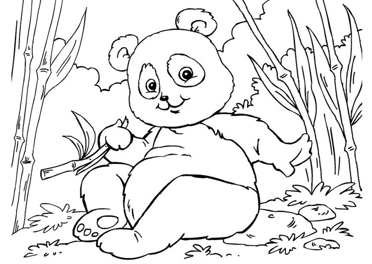 Dibujo Para Colorear Panda Dibujos Para Imprimir Gratis