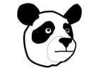 Dibujo para colorear Panda