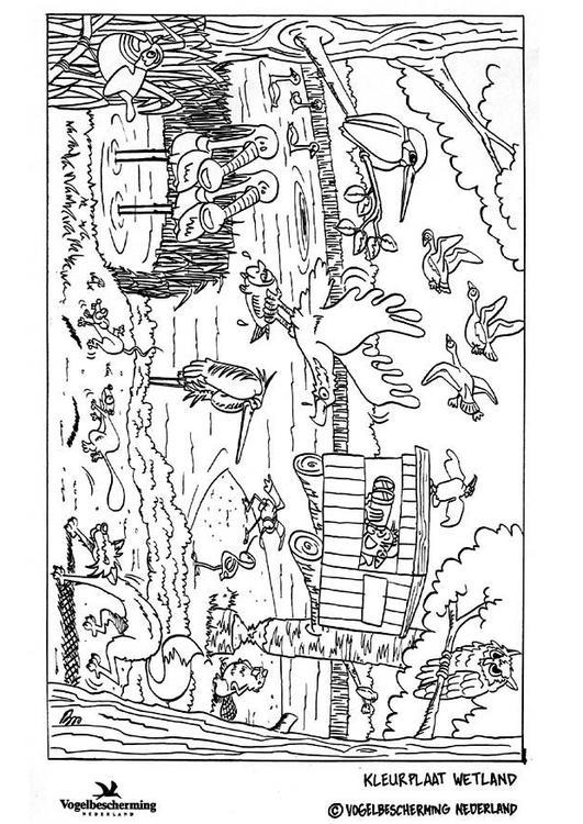 Volwassenen Y Kleurplaten Dibujo Para Colorear Pantano Img 8872