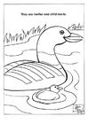 Dibujo para colorear Patos en parque natural