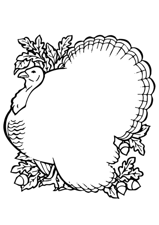 Dibujo para colorear pavo - Img 19788
