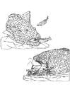 Dibujo para colorear Peces pequeños y gambas  bordean a los peces