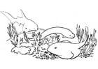 Dibujo para colorear Peces - tiburón