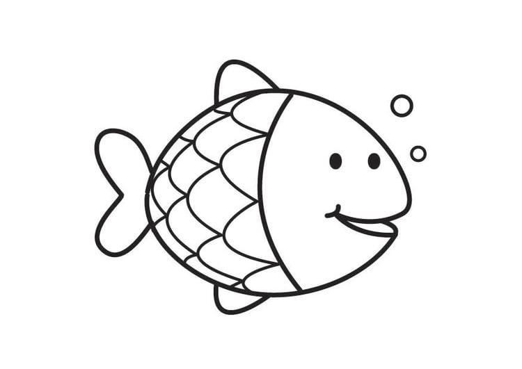 Dibujo para colorear pez   Img 17714