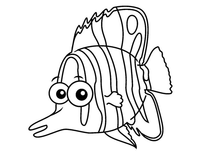 Dibujo para colorear pez mariposa - Img 23085