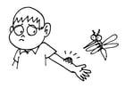 Dibujo para colorear Picadura de mosquito