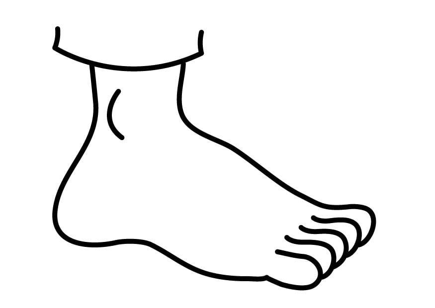 dibujo para colorear pie