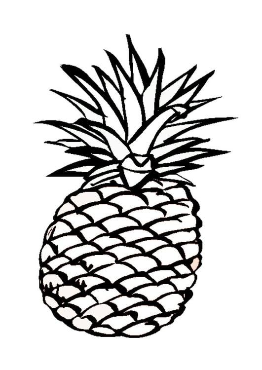 Dibujo Para Colorear Piña Img 9547
