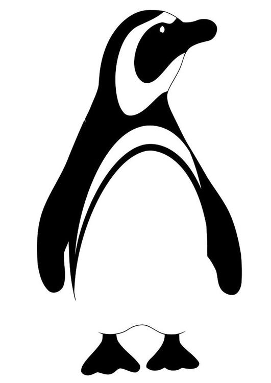 Dibujo para colorear pingüino - Img 19620
