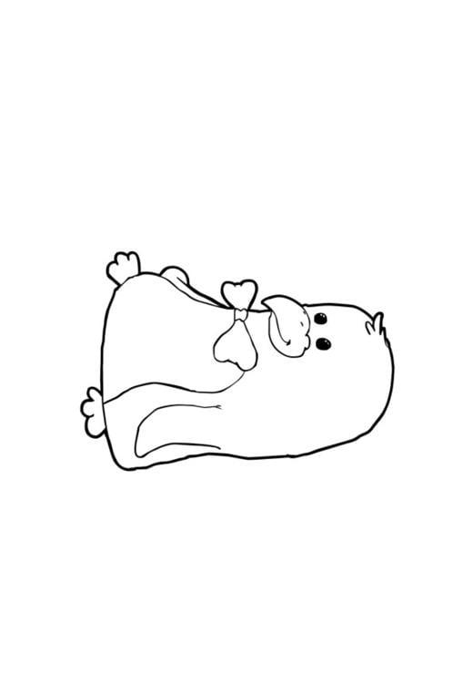 Dibujo para colorear Pingüino - Img 13771
