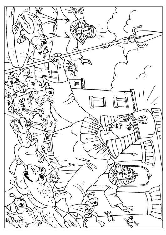 Dibujo para colorear plaga de las ranas - Img 26004