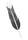 Dibujo para colorear pluma
