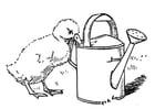 Dibujo para colorear Pollo