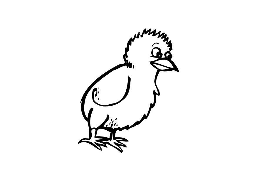 Kippen En Kuikens Kleurplaten Dibujo Para Colorear Polluelo Img 10864