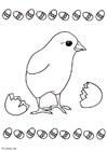 Dibujo para colorear Polluelo fuera del huevo