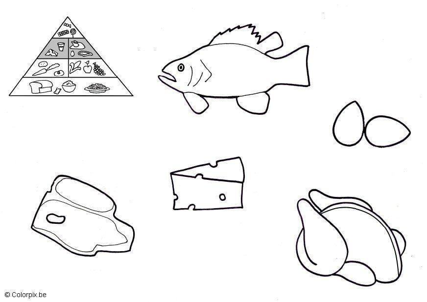 Dibujo para colorear Productos de origen animal  Img 5673