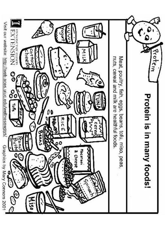 Dibujo para colorear Proteínas en nuestra alimentación - Img 5926