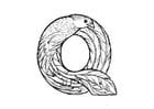 Dibujo para colorear q-quetzal