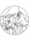Dibujo para colorear Raíces de mangle