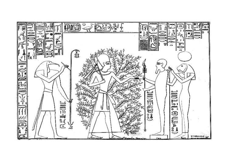 Dibujo Para Colorear Ramses Y El árbol De La Vida Img 27051