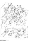 Dibujo para colorear Rana de san antonio