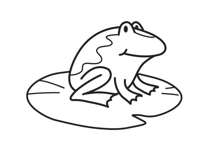 Dibujo para colorear rana - Img 17874