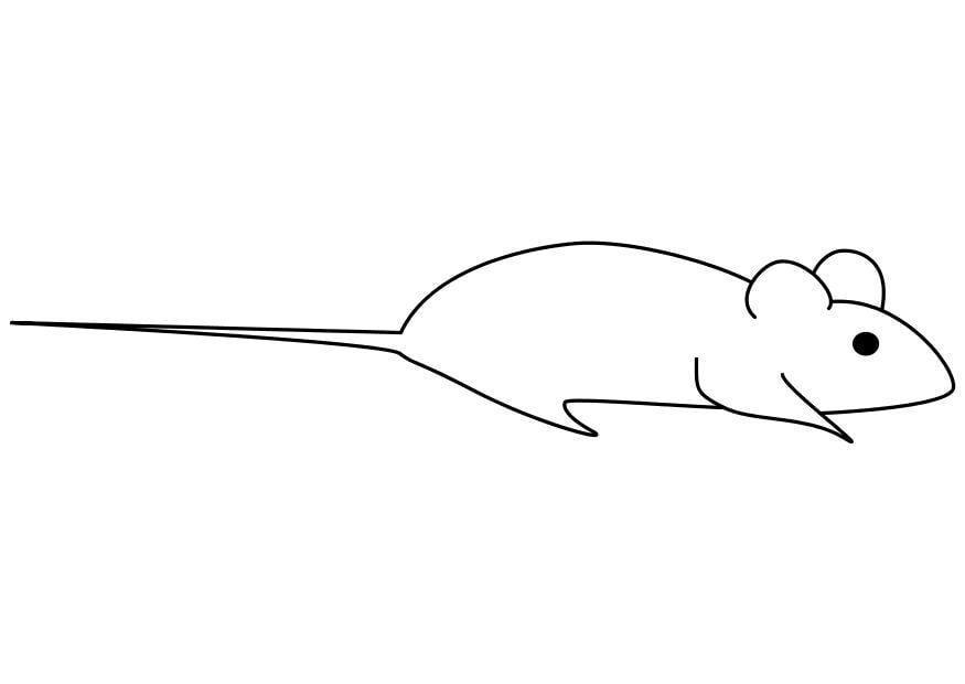 dibujo para colorear ratón img 10250