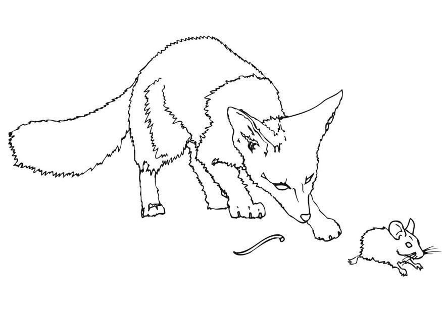 Volwassen Kleurplaat Vos Dibujo Para Colorear Rat 243 N Espinoso Img 9479