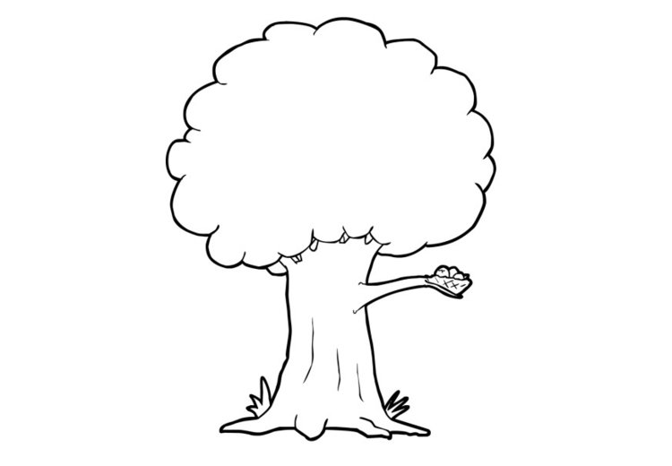 Dibujo Para Colorear árbol Dibujos Para Imprimir Gratis
