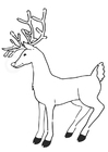 Dibujo para colorear reno