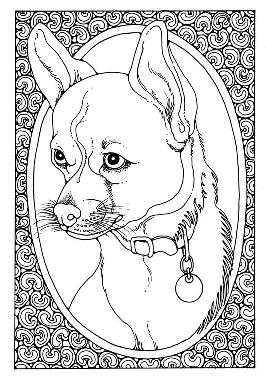 Dibujo Para Colorear Retrato De Perro Img 28205